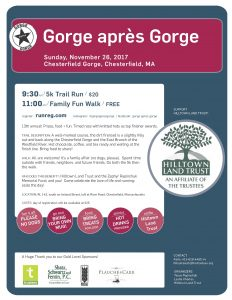 Poster for Gorge apres Gorge 2017