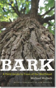 Image of cover of Michael Wojtech's book Bark: A Field Guide to the Trees of the Northeast. Image on cover is a close-up image of a tree trunk, angled up into the tree canopy.