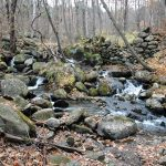 Rock piles show the remnants of an old dam aside a stream in a wooded landscape.