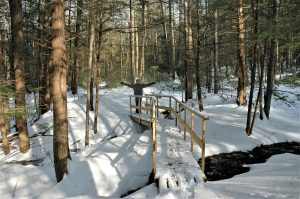Wooden bridge over a stream in the woods. Snow is covering the ground and a person standing at the far end of the bridge has their arms raised in celebration